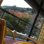 神奈川県奥湯河原温泉にある山翠楼に行ってみました