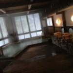 栃木県塩原温泉にあるやまの宿下藤屋に行ってみました