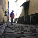 お金とキャッシュフローそして時間があるバックパッカーとして歴史深きバルト3国を巡る一人旅(エストニア編)