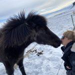 アイスランド&リングロードの旅